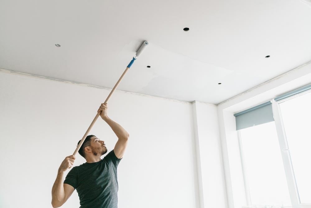 Peintre Plafond et moulures